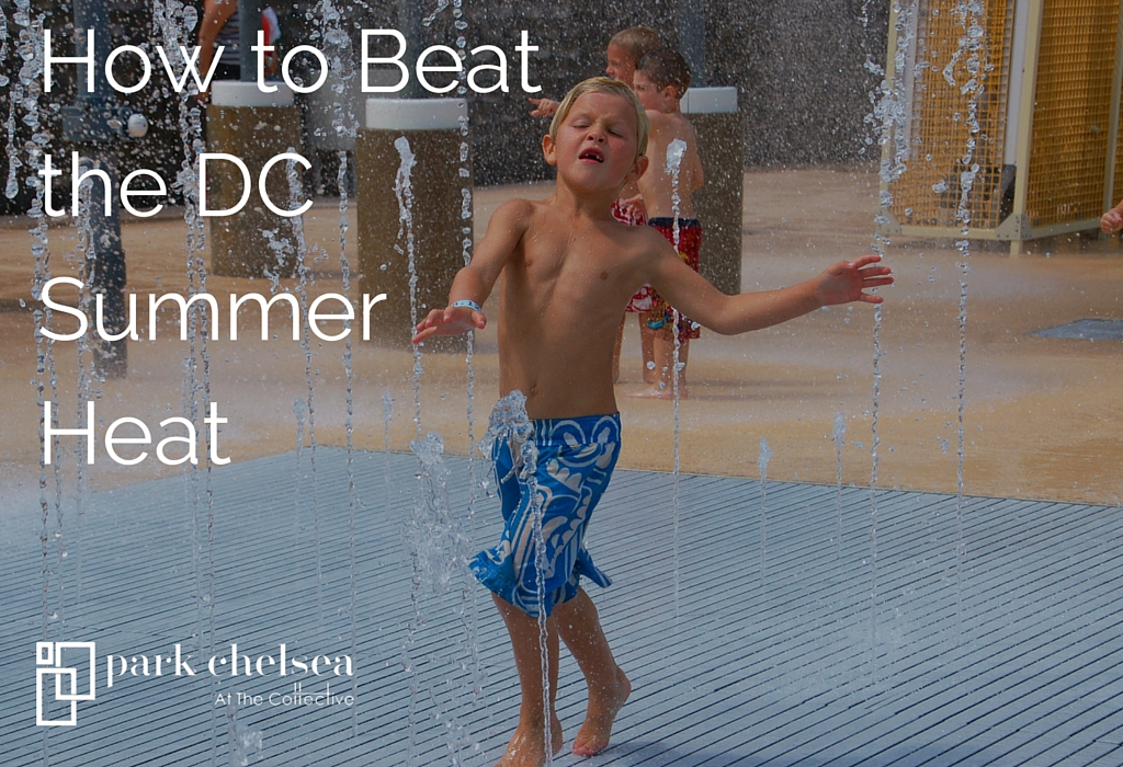 How to Beat the DC Summer Heat