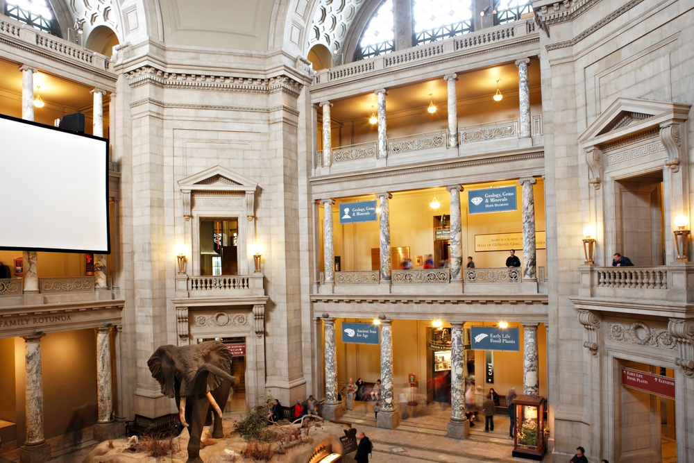 Museum Of Natural History Free Fridays