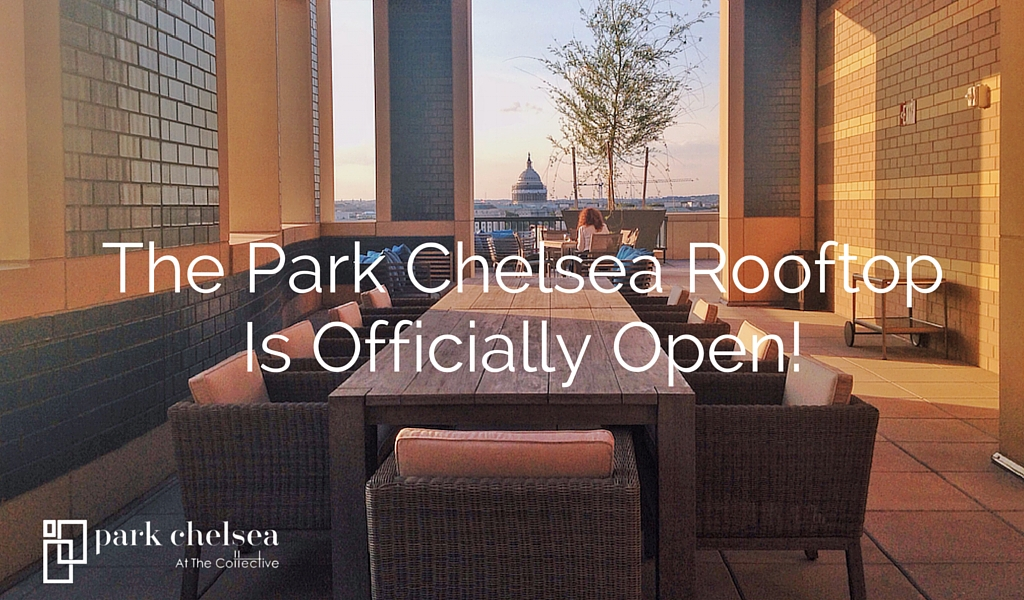 Park Chelsea | Luxury Apartments in The Capitol Riverfront Neighborhood | Washington, DC